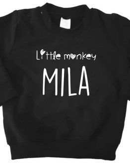 Sweater_little-monkey-naam2